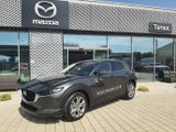Mazda CX-30 Skyactiv-G122 Plus/Style 90kW